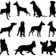 Stock Vector: Dogs silhouette