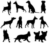 Dogs silhouette — Stock Vector