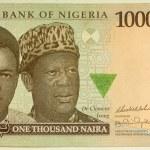 Постер, плакат: 1000 naira