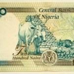 200 Naira — Stock Photo #1167679