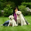 The girl sits on a grass with two dogs - Stockfoto