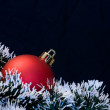 Christmas ball and ornaments — Stock Photo