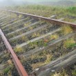 Old railroad in the morning fog - Stock Photo