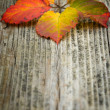 Autumn leaves on the wooden background — Stock Photo #1217006