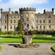 irish castle — Stock Photo