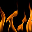 Fire flame — Stock Photo #1389029