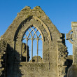 Athenry  Friary,windows details cross — Foto Stock