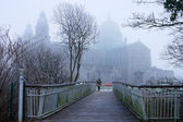 Galway Cathedral vanishing in the fog — Stock Photo