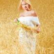 Royalty-Free Stock Photo: Young beautiful woman in golden wheat fi