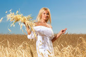 Portrait of pretty woman in the field — Stock Photo