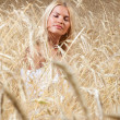 Stock Photo: Young beautiful womin golden wheat fi