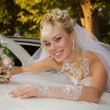 Stock Photo: Bride