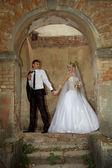 Wedding — Stockfoto