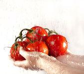 Antes de comer es necesario lavar verduras en fluir agua. — Foto de Stock