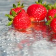 Strawberry — Stock Photo #1371733