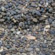 Royalty-Free Stock Photo: Pebbles
