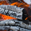 Royalty-Free Stock Photo: Burninging firewood