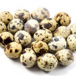 Quail eggs in egg shape — Stock Photo