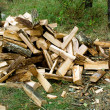 Royalty-Free Stock Photo: Firewood