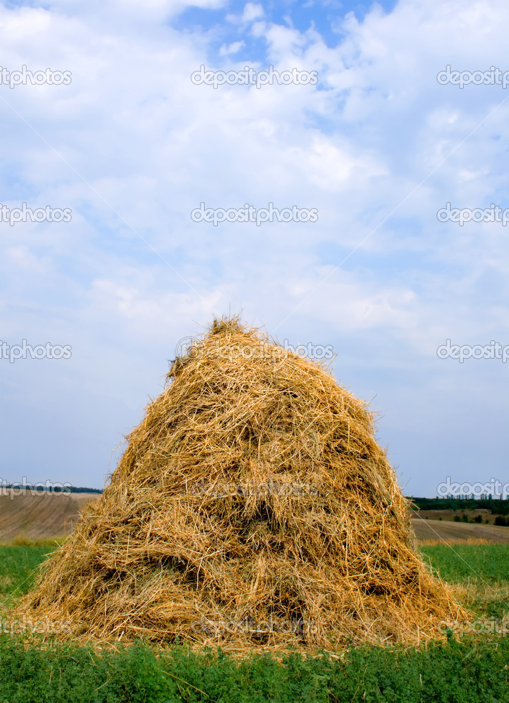 Landscape with haystacks and blue sky with cloud. — Stock Photo #1192793