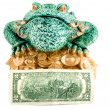 Stock Photo: Frog 2 dollar symbol wealth
