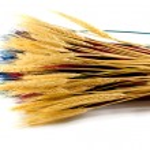 Ear wheat — Stock Photo #1208974