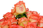 "Roses ""I Love you"" — Stock Photo"
