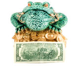 Frog 2 dollar symbol wealth — Stock Photo
