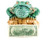 Frog 2 dollar symbol wealth — Stock Photo
