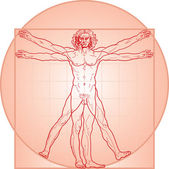 The Vitruvian man. Red version. — Stock Vector