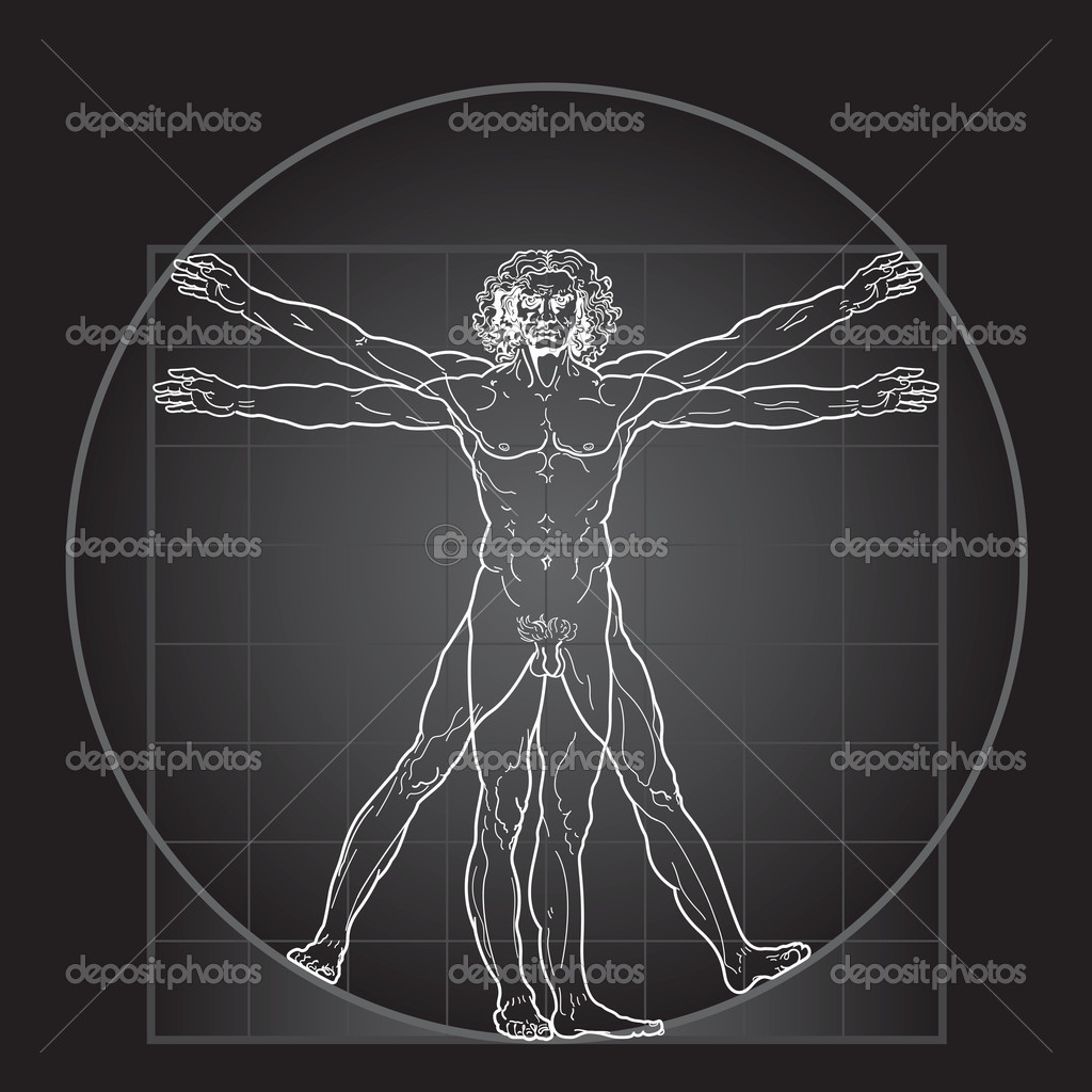 The Vitruvian man, or so called Leonardo's man. Detailed drawing. Invert version.   #1544856