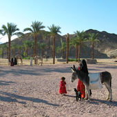 Bedouin woman with a child — Photo