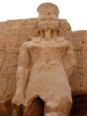Statue du pharaon — Photo