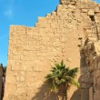 Wall with hieroglyphic reliefs — Stock Photo