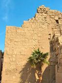 Parede com relevos hieroglíficos — Foto Stock