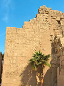 Wall with hieroglyphic reliefs — Foto Stock