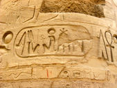 埃及象形文字的列上 — 图库照片