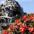 Fountain with beautiful flowers - Stock Photo