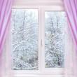 Winter from window — Stock Photo