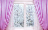 Winter from window — Stock Photo