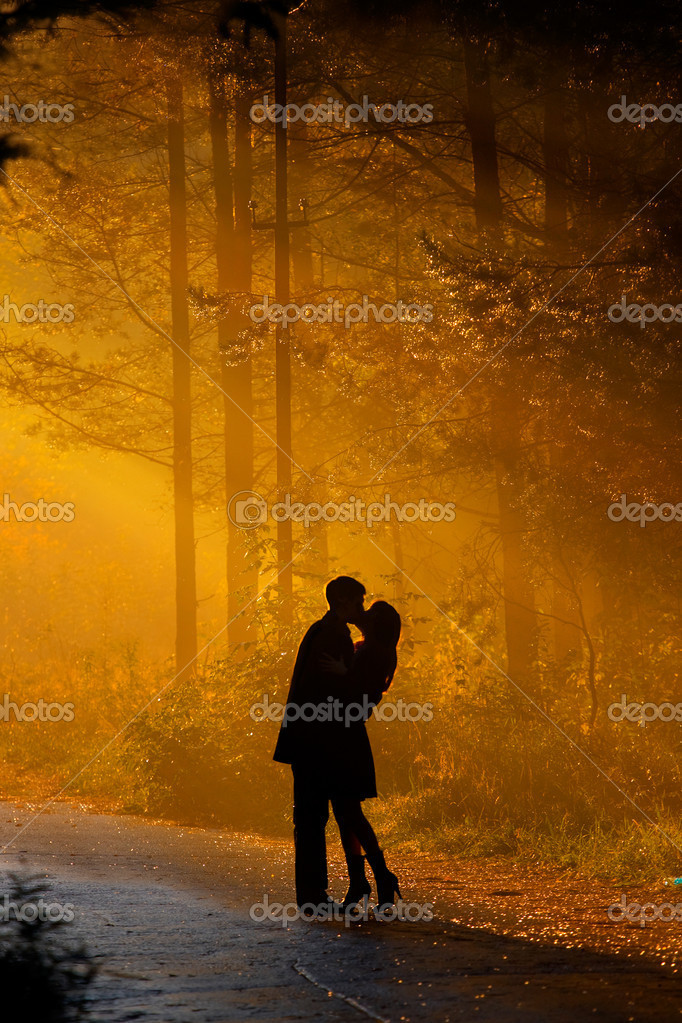 Beautiful shot of kissing couple in the sunlight — Foto de Stock   #1178046