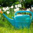 Watering can — Stock Photo #1180997