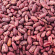 Haricot beans. - Stock Photo
