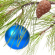Christmas ball on pine branch - Stock Photo