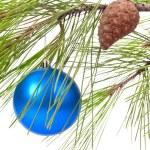 Christmas ball on pine branch — Stock Photo