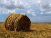 Single haycock on a field in cloudy weat — Stock Photo