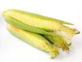 Corn on the cob. — Stock Photo