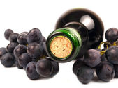 Red wine in bottle and grapes — Stock Photo