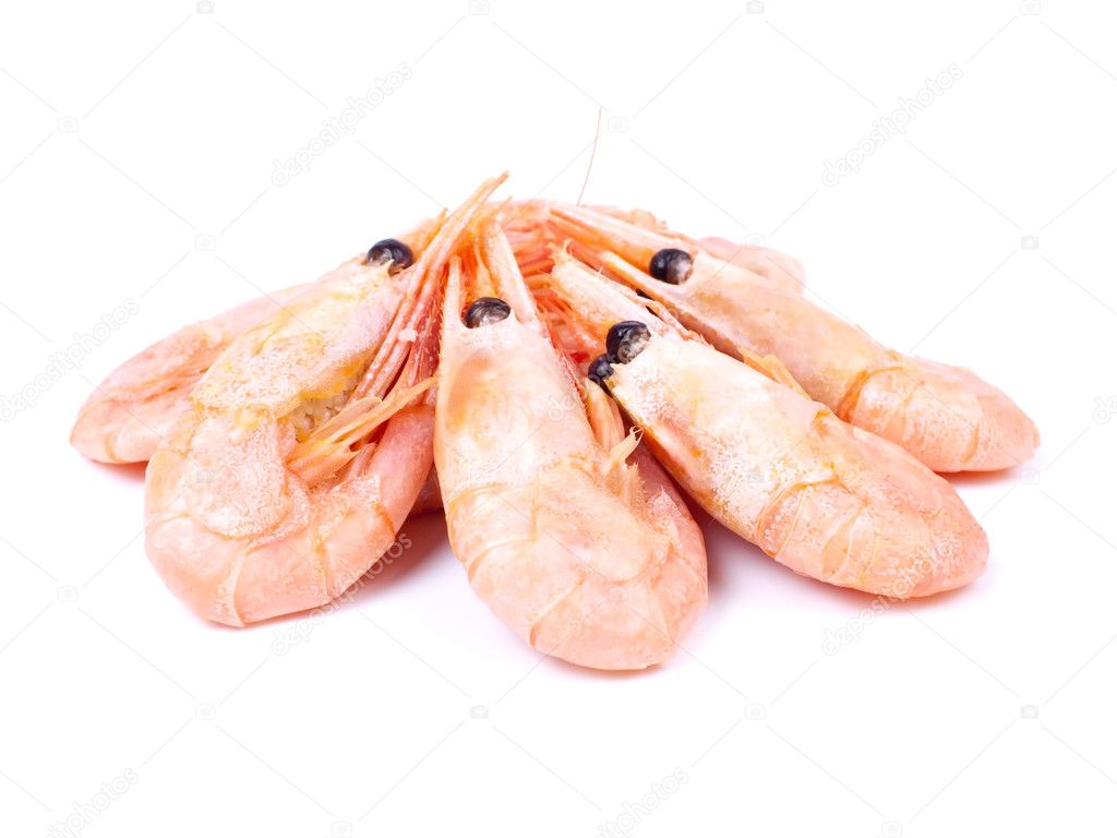 Boiled shrimps isolated on white background  Stock Photo #1177885