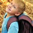 Schoolboy in fall time — Stock Photo #1427601